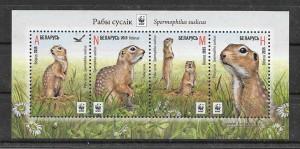 Sellos fauna protegida Bielorrusia 2015