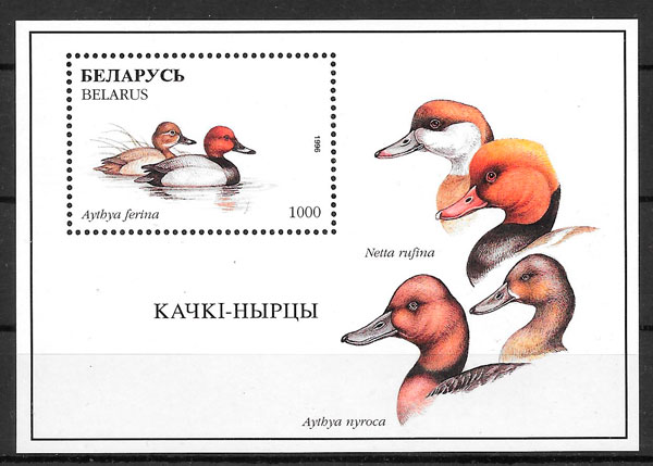 filatelia fauna Bielorrusia 1996