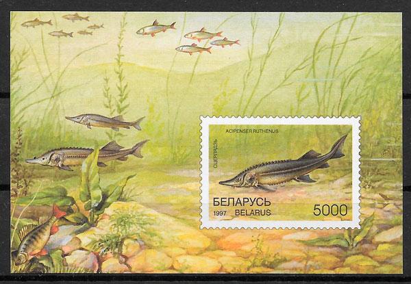 colección sellos fauna Bielorrusia 1997