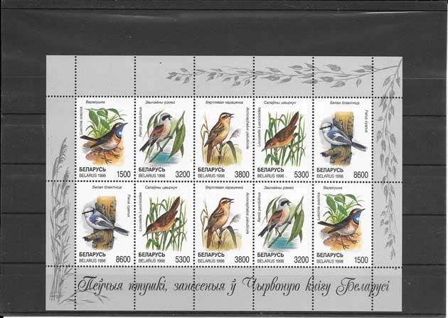 Sellos filatelia fauna - aves de Bielorusia