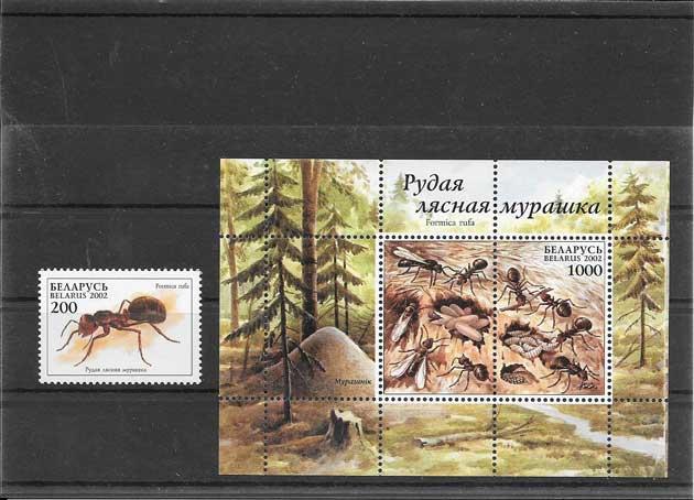 Filatelia sellos serie y hojita de hormigas