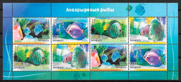 sellos fauna Bielorrusia 2006