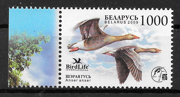 filatelia colección fauna Bielorrusia 2009