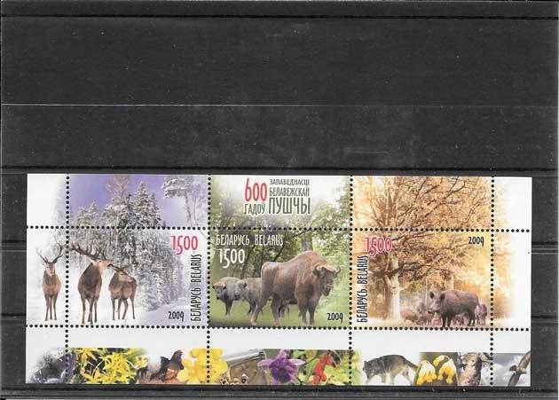 Colección sellos hojita reserva natural de bielorrusis