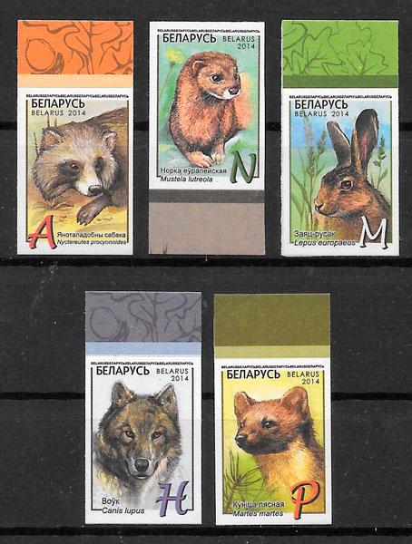 sellos fauna Bielorrusia 2014