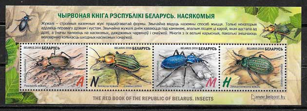 Bielorusia-2016-08-fauna