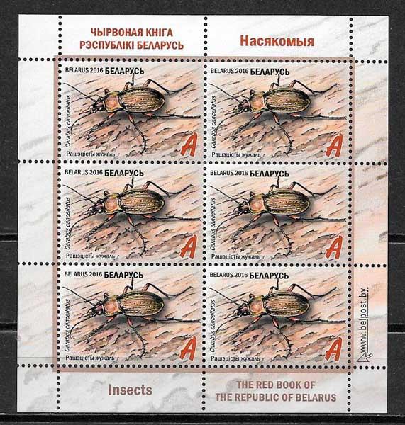 Bielorusia-2016-09-fauna