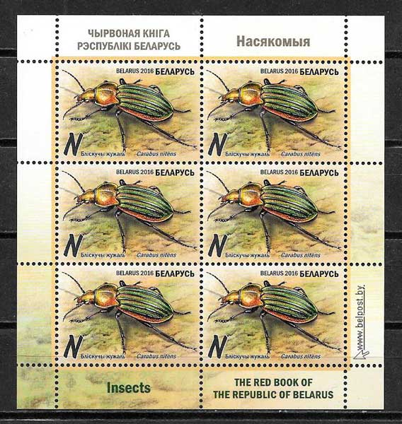 Bielorusia-2016-10-fauna
