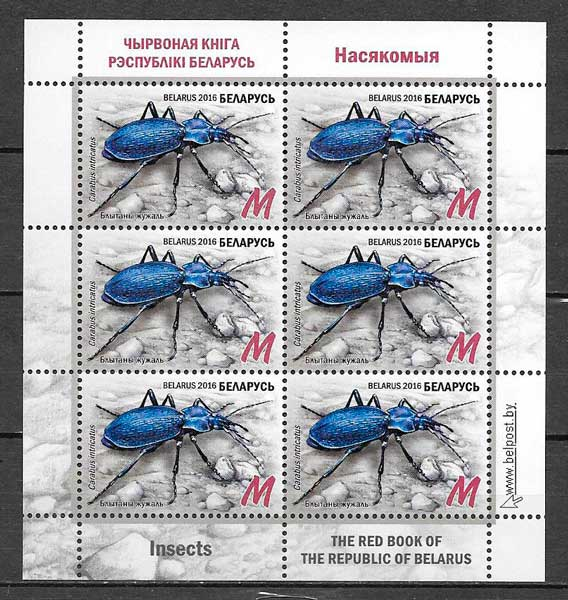 Bielorusia-2016-11-fauna