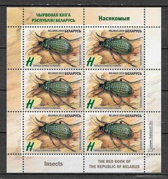 Bielorusia-2016-12-fauna