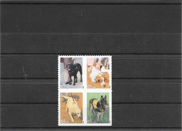 Colección sellos serie adhesiva perros razas EE:UU
