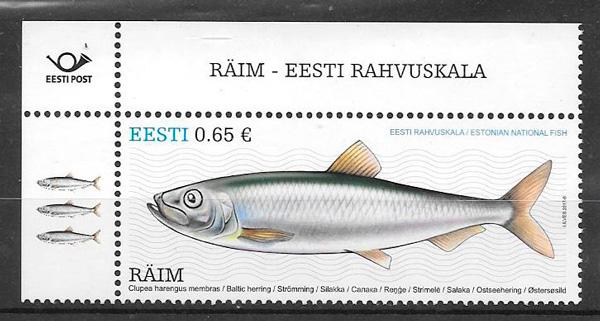 sellos fauna Estonia 2017