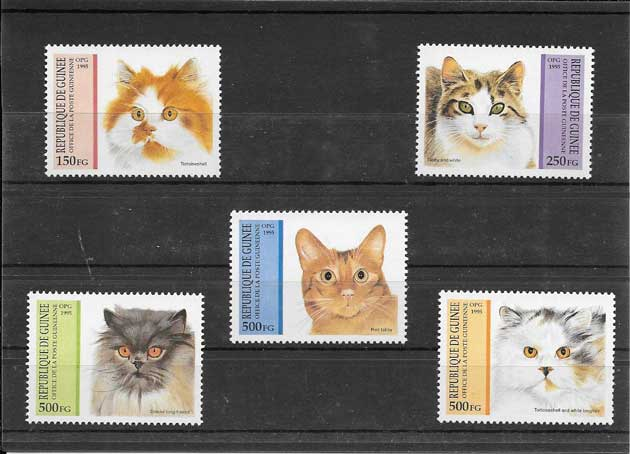 Sellos serie fauna gatos Guinea