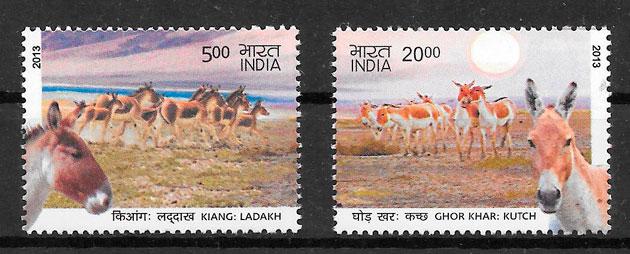 sellos fauna India 2013