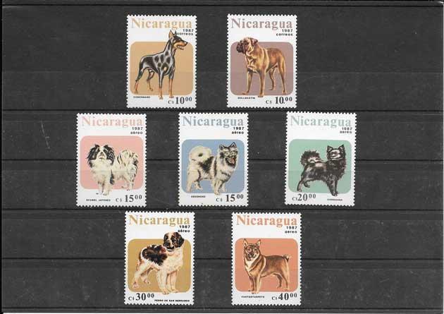 Colección sellos serie de fauna - perros Nicaragua