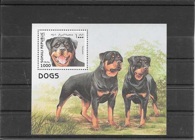 Colección sellos fauna - perros Somalia-1997-03