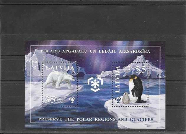 Sellos fauna protección zonas polares