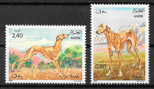 filatelia colección perros Argelia 1983