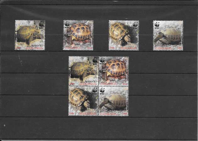Estampillas serie de fauna tortugas