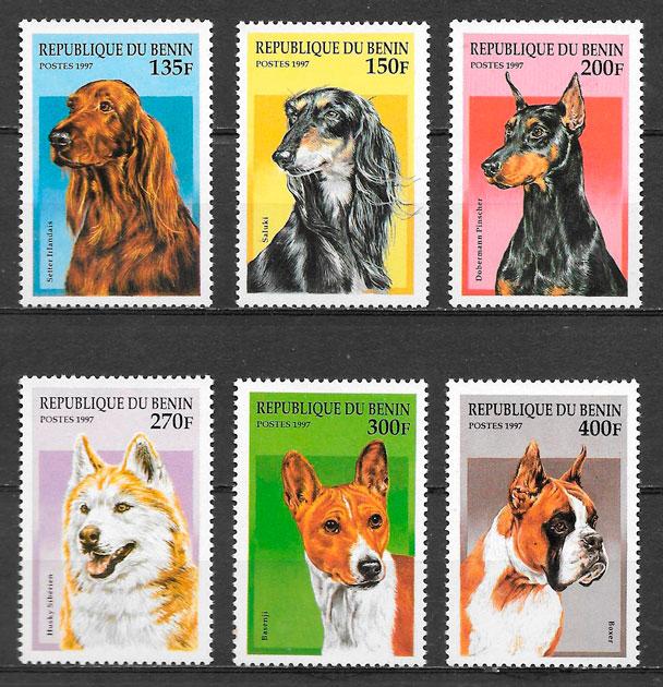 filatelia colección gatos y perros Benin 1997