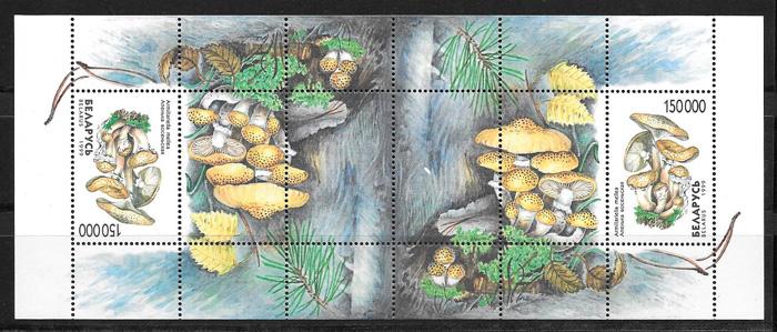 filatelia setas Bielorrusia 1999