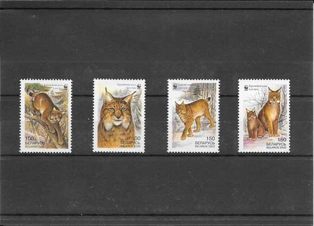 Colección sellos seriie de fauna lince