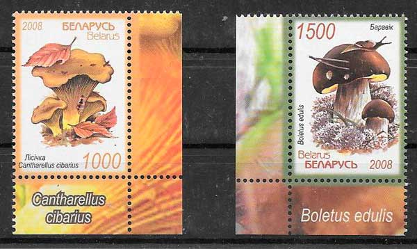 sellos setas Bielorrusia 2008
