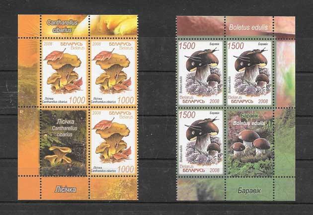 Colección sellos serie con viñeta de hongos Bielorrusia
