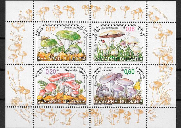 colecci8ón sellos setas Bulgaria 1999