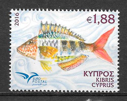 sellos fauna Chipre 2016