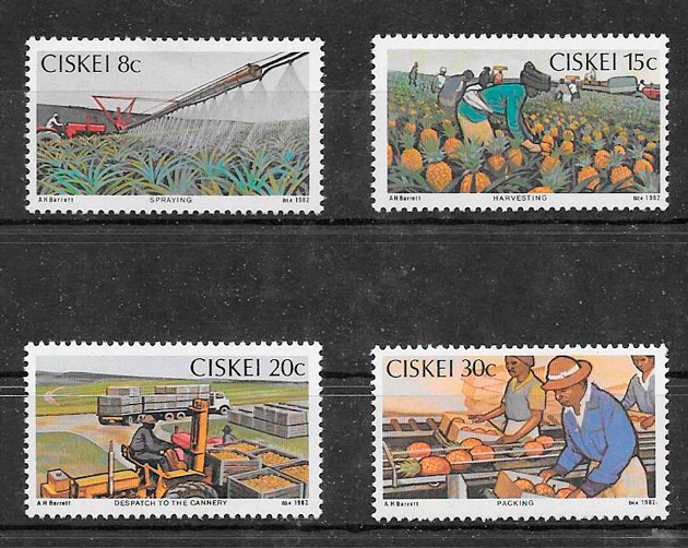 filatelia colección frutas Ciskei 1982