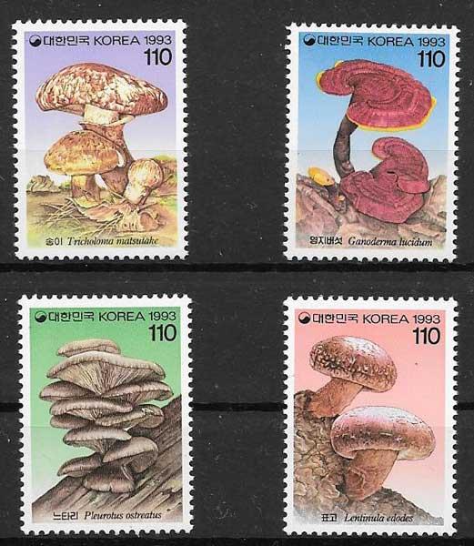 Corea-1993-01