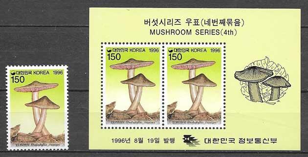 Corea-1996-06