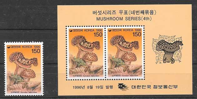 Corea-1996-08