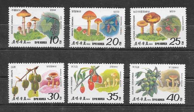 Filatelia sellos tema de flora - hongos