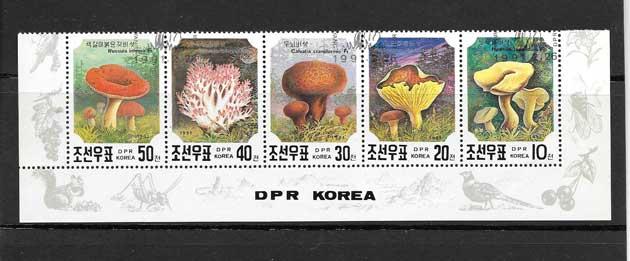sellos del tema hongos.