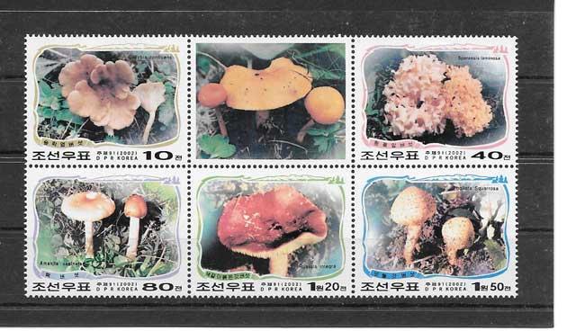 Filatelia sellos hongos representativos del 2002