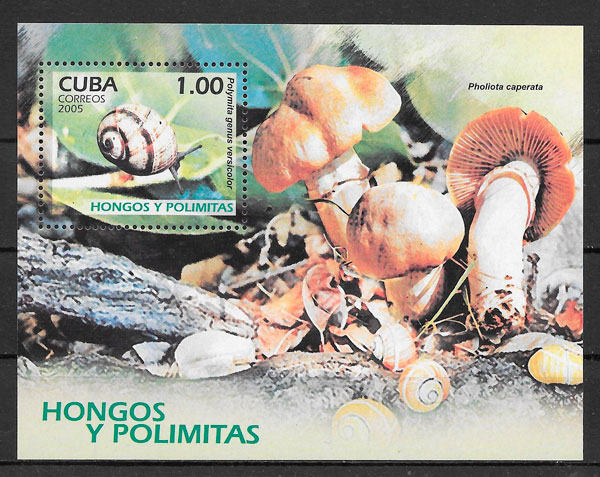 sellos setas Cuba 2005