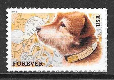colección sellos gatos y perros EE:UU 2011