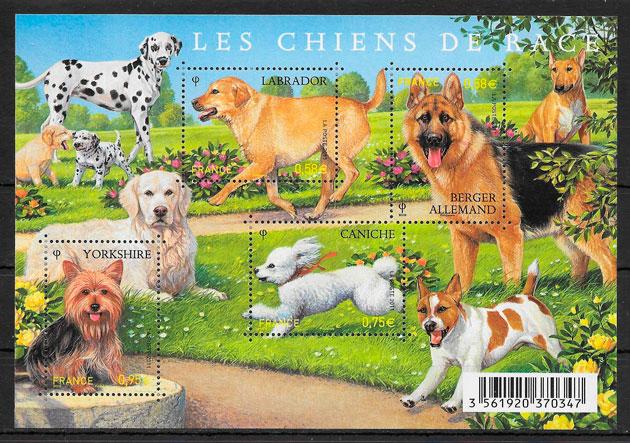 colección sellos gatos y perros Francia 2011