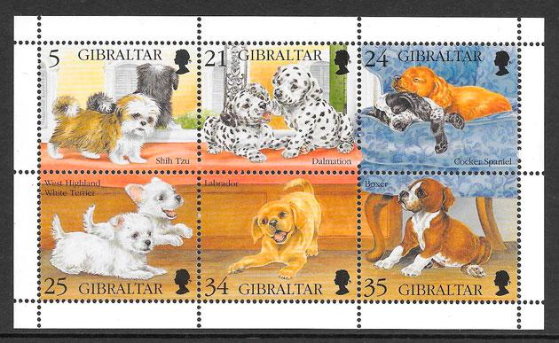 filatelia gatos y perros de Gibraltar 1997