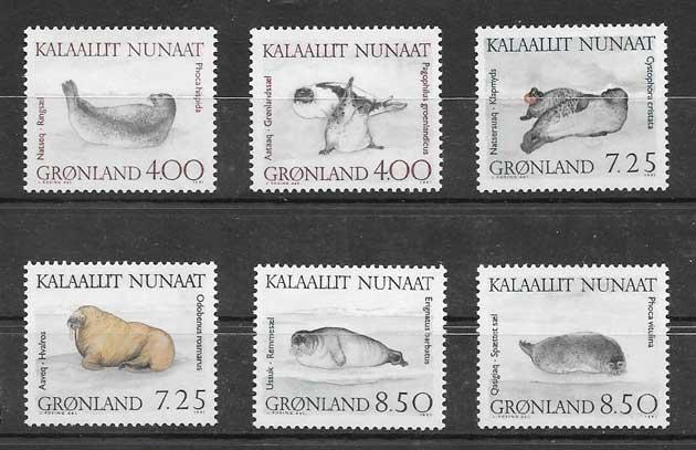sellos fauna marina Groenlandia