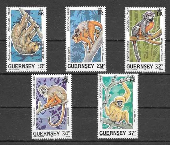 Sellos monos de Guernsey en peligro extinción. 1989
