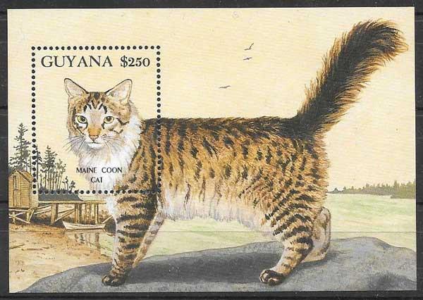 Guyana-1992-06-fauna