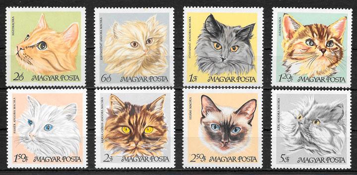sellos gatos y perros Hungría 1968