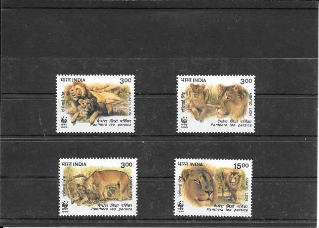 Sellos fauna protegidas - leones