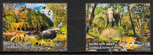 colección sellos fauna India 2015