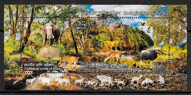 India-2015-10-fauna