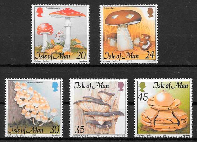 sellos setas Gran Bretaña Isla de Man 1995
