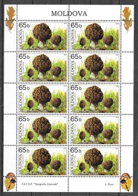 colección sellos setas Moldavia 2007